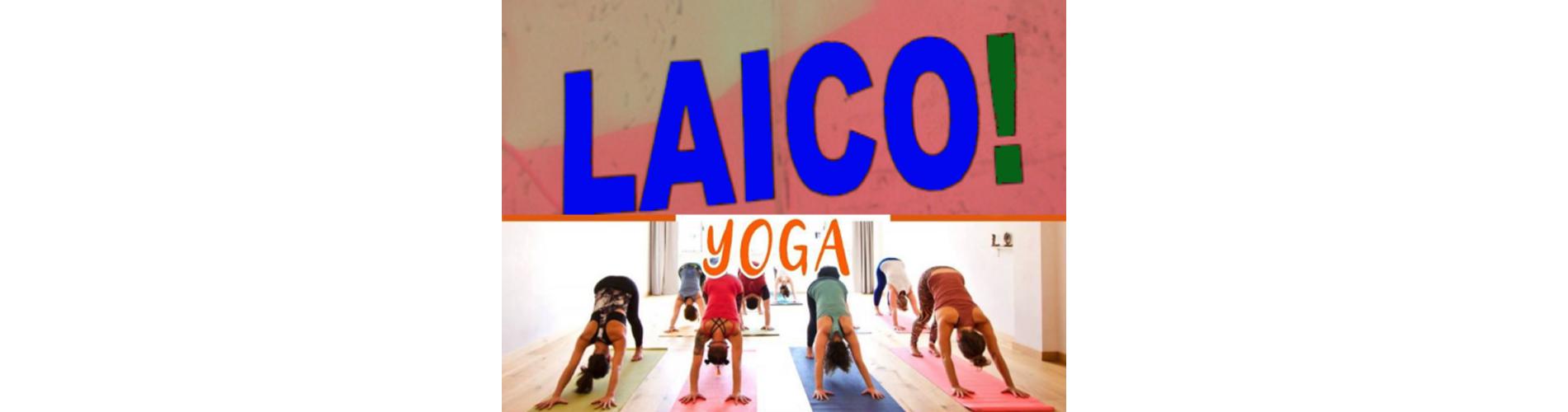 Comisión Internacional de Yoga en la Educación de la Federación  Internacional de Yoga 86223ae263ee